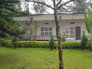 House for rent at KImihurura